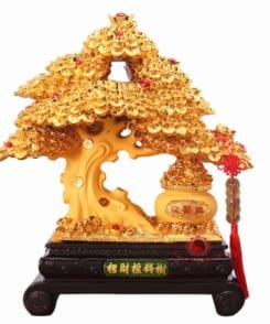 cây phát lộc phát tài mạ vàng 3